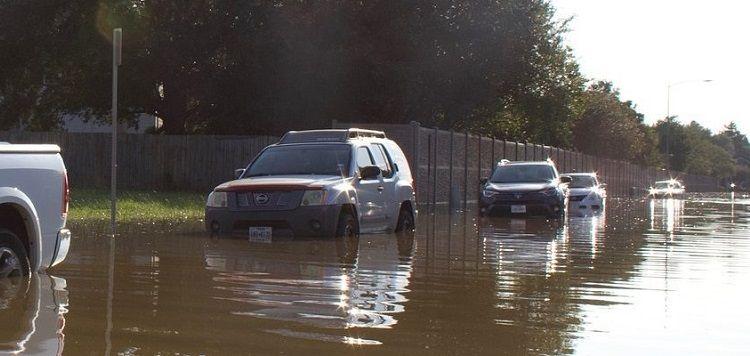 auta zalane z usa